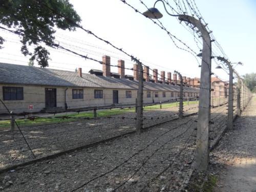 Wycieczka  do Auschwitz Birkenau 084