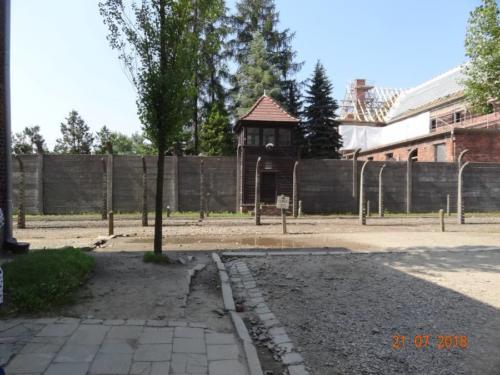 Wycieczka  do Auschwitz Birkenau 086