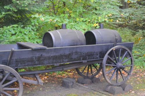 kamieniec bobrka029